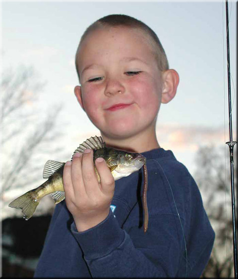 Brian Purtell Perch Picture
